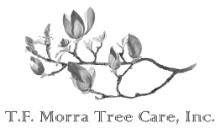 tf morra tree care inc